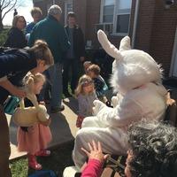 Bunny at Egg Hunt