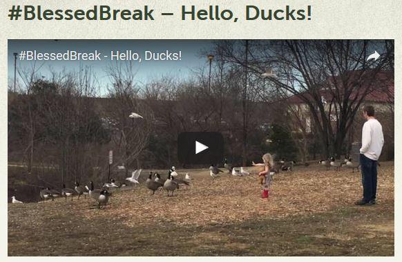 Blessed Break Hello Ducks